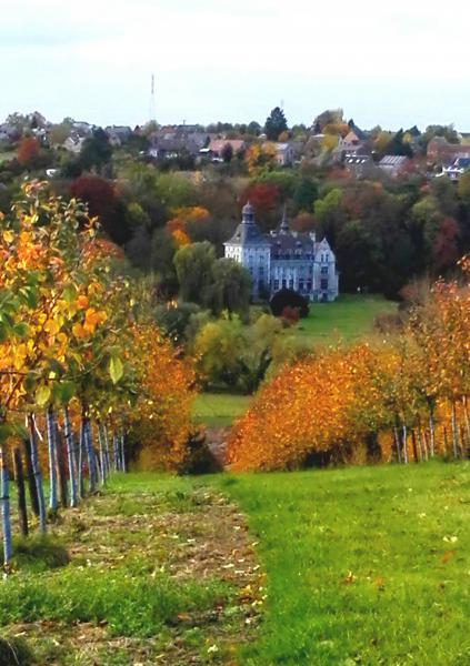 het kasteel is omgeven door fruitbomen, in de herfst