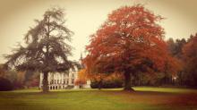 La parc avec des lueurs d'automne