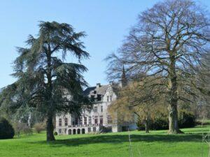 le château vu du fond du parc