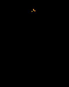 le Château de Dalhem en filigrane